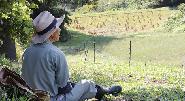 宮城県知事賞入賞作品『沢尻の田を守る人』