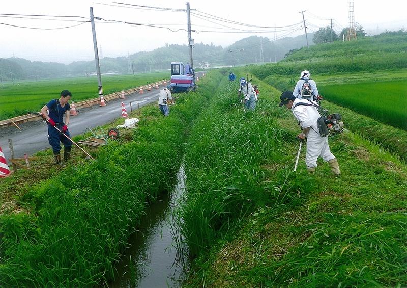震災復旧の脇で江刈作業
