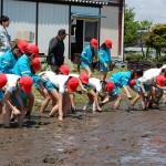 平成21年度「田んぼの学校」①