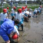 H22「田んぼの学校」①